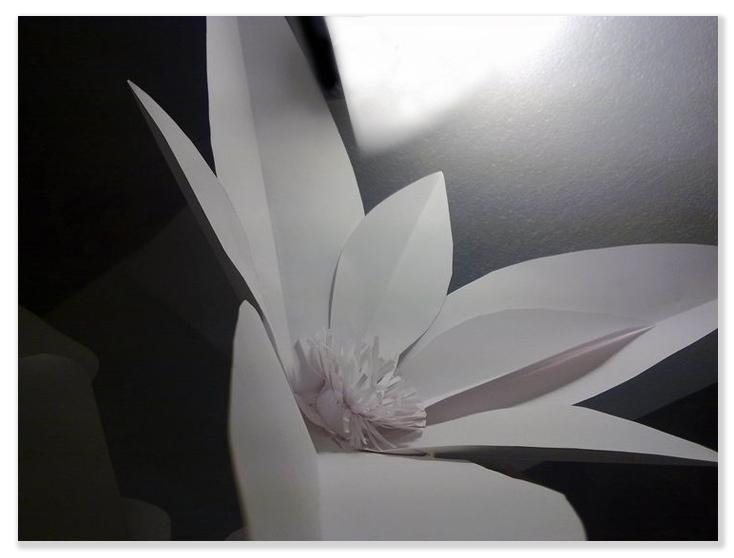 Fiore di carta gigante